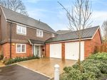 Thumbnail for sale in Silverwood Rise, Romsey, Hampshire