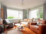 Thumbnail for sale in Sycamore Close, Woodingdean, Brighton, East Sussex