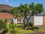 Thumbnail to rent in Ladbroke Hurst, Dormansland, Lingfield