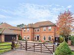 Thumbnail for sale in Hanyards Lane, Cuffley, Hertfordshire