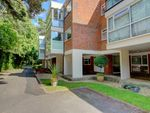 Thumbnail to rent in The Avenue, Westbourne, Bournemouth