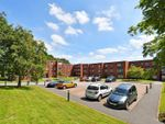 Thumbnail to rent in Storth Park, Fulwood Road, Sheffield