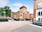 Thumbnail to rent in Springmeadow Road, Edgbaston, Birmingham