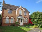 Thumbnail for sale in Milton Bridge, Wootton, Northampton