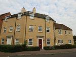 Thumbnail for sale in Hinchingbrooke Park, Huntingdon, Cambridgeshire