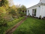 Thumbnail for sale in Hartop Road, Torquay