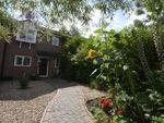 Thumbnail to rent in Murray Road, Wokingham