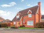 Thumbnail for sale in Orchard Grange, Lower Dicker, Hailsham, East Sussex