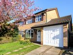 Thumbnail to rent in Martial Daire Boulevard, Brackley