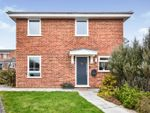 Thumbnail for sale in Primula Way, Chelmsford