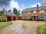Thumbnail to rent in Pinewood Chase, Crowborough