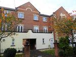 Thumbnail to rent in Greenside, Cottam, Preston
