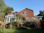 Thumbnail to rent in Hawthorn Way, Storrington, Pulborough