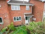 Thumbnail for sale in Swift Hollow, Southampton