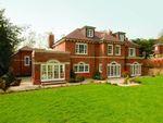 Thumbnail to rent in Shrubbs Hill Lane, Ascot