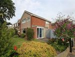 Thumbnail to rent in Shalgrove Field, Preston