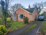 Thumbnail to rent in Beccles Road, Burgh St. Peter, Beccles