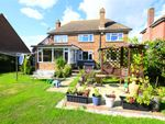 Thumbnail for sale in Wychurst Gardens, Bexhill-On-Sea, East Sussex