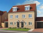 "Thumbnail to rent in ""The Sycamore"" at Off Trunk Road, Normanby, Middlesbrough"