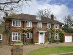 Thumbnail for sale in Barham Road, Wimbledon