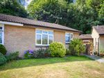Thumbnail for sale in Arbourvale, St. Leonards-On-Sea