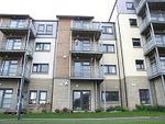 Thumbnail to rent in Hammerman Avenue, Aberdeen
