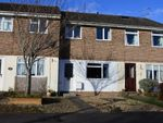 Thumbnail for sale in Maple Way, Gillingham