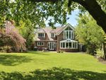 Thumbnail for sale in Winchester Road, Bishops Waltham, Southampton