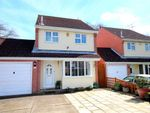 Thumbnail for sale in Juniper Close, Worthing