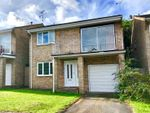 Thumbnail to rent in Birch Close, Corfe Mullen, Wimborne, Dorset