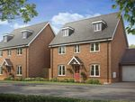 Thumbnail to rent in Staunton Gate, Cockaynes Lane, Alresford, Colchester