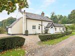 Thumbnail for sale in Gosport Road, Farringdon, Alton, Hampshire