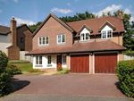 Thumbnail to rent in Rushmere Place, Englefield Green, Surrey