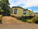 Thumbnail to rent in Elstree Park, Barnet Lane, Borehamwood