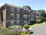 Thumbnail to rent in Heathfield Green, Midhurst