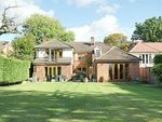 Thumbnail for sale in Pishiobury Drive, Sawbridgeworth, Hertfordshire