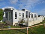 Thumbnail for sale in St. Osyth Beach Holiday Park, Clacton-On-Sea