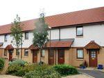 Thumbnail to rent in Johnston Court, Falkirk