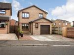 Thumbnail to rent in Culzean Drive, Newarthill, Motherwell, North Lanarkshire