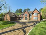 Thumbnail for sale in Woodland Drive, East Horsley, Leatherhead, Surrey