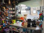 Thumbnail for sale in Pets, Supplies & Services S36, Stocksbridge, South Yorkshire