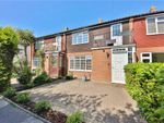 Thumbnail for sale in Camellia Place, Twickenham