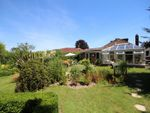 Thumbnail for sale in Downside Avenue, Findon Valley, Worthing