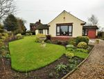 Thumbnail for sale in Middlesykes Lane, Grimoldby, Louth