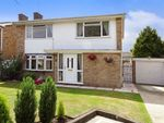 Thumbnail to rent in Lawn Lane, Chelmsford, Essex