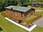 Thumbnail for sale in Mertyn Downing Lane Mostyn, Holywell, Flintshire, North Wales