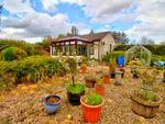 Thumbnail to rent in Mintlaw, Peterhead