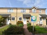 Thumbnail for sale in Foxglove Way, Yeovil