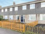 Thumbnail for sale in Beech Close, Huntingdon, Cambridgeshire