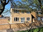 Thumbnail for sale in Chesterford Green, Basildon